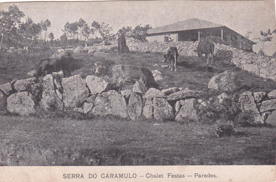 Chalet Festas - Paredes