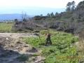 Posto-de-Observação-da-Natureza-(3)